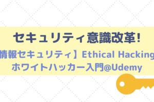 レビュー|オンライン講座Udemyの【情報セキュリティ】Ethical Hacking:ホワイトハッカー入門で意識改革!